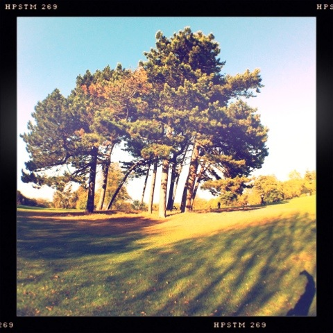 20111017-204330.jpg