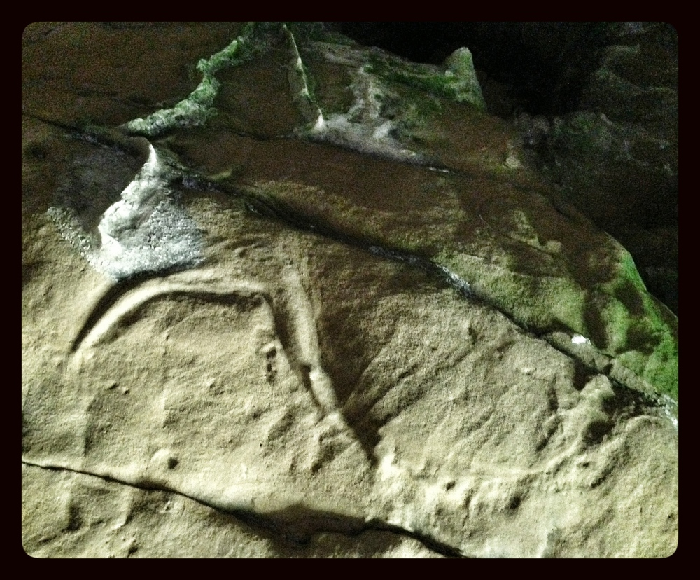 Creswell Crags  (6/6)