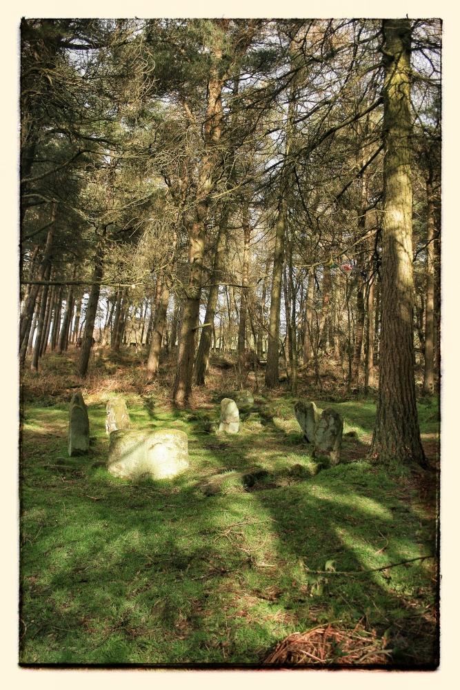 Dol Tor Stone Circle (1/6)