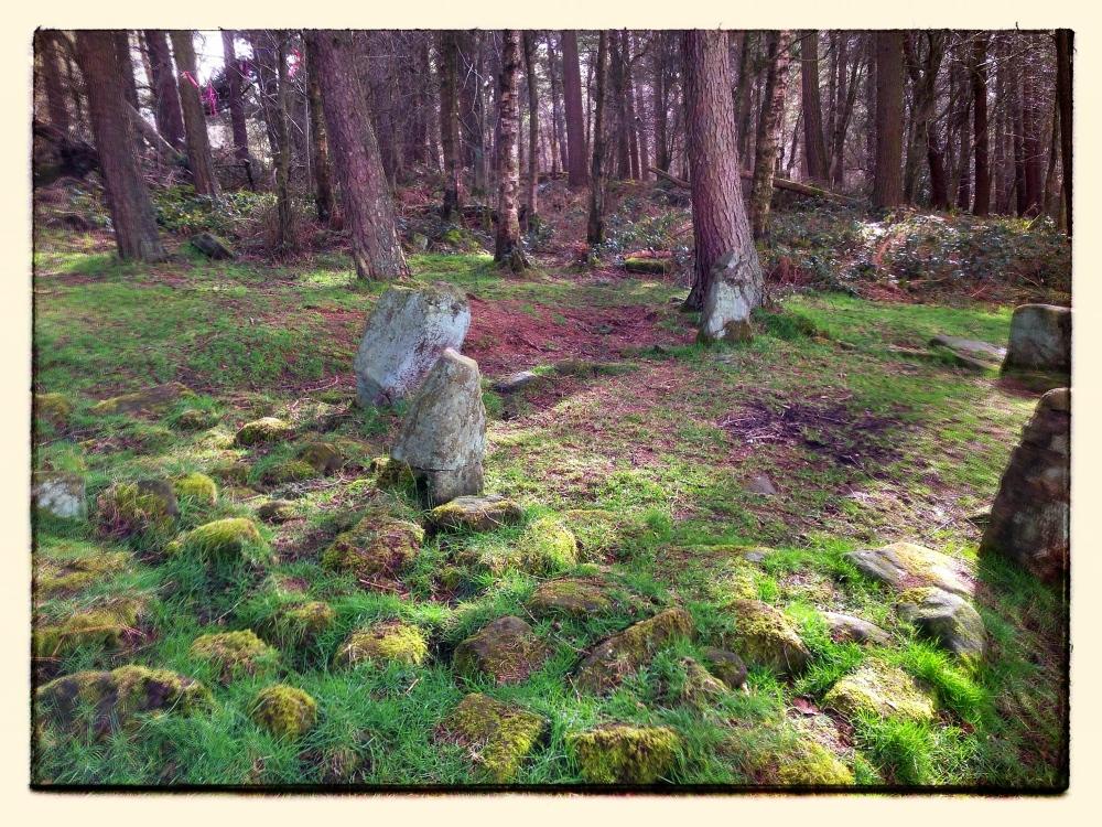 Dol Tor Stone Circle (3/6)