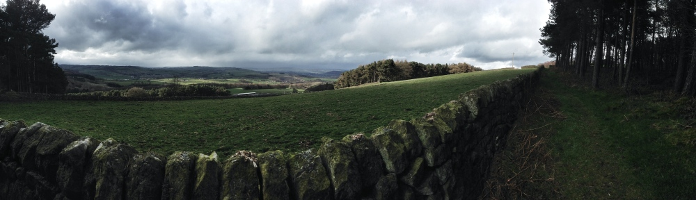 Dol Tor Stone Circle (4/6)