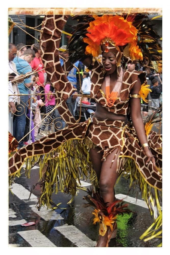 Nottingham Carnival 2014 (3/6)