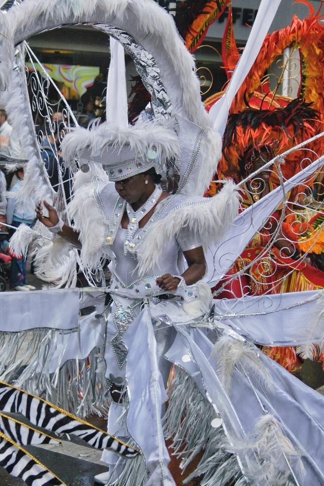 Nottingham Carnival 2014 (4/6)