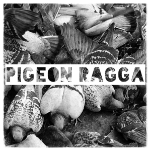 05 Pigeon